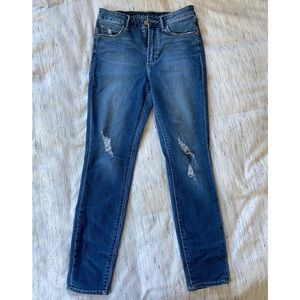 Articles of Society Skinny Distressed Denim